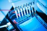 Une stratégie nationale de diagnostic génétique des maladies neuromusculaires