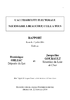 Accessibilité-electorale.pdf - application/pdf
