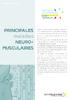 FicheTechnique__PrincipalesMNM_nov2017.pdf - application/pdf